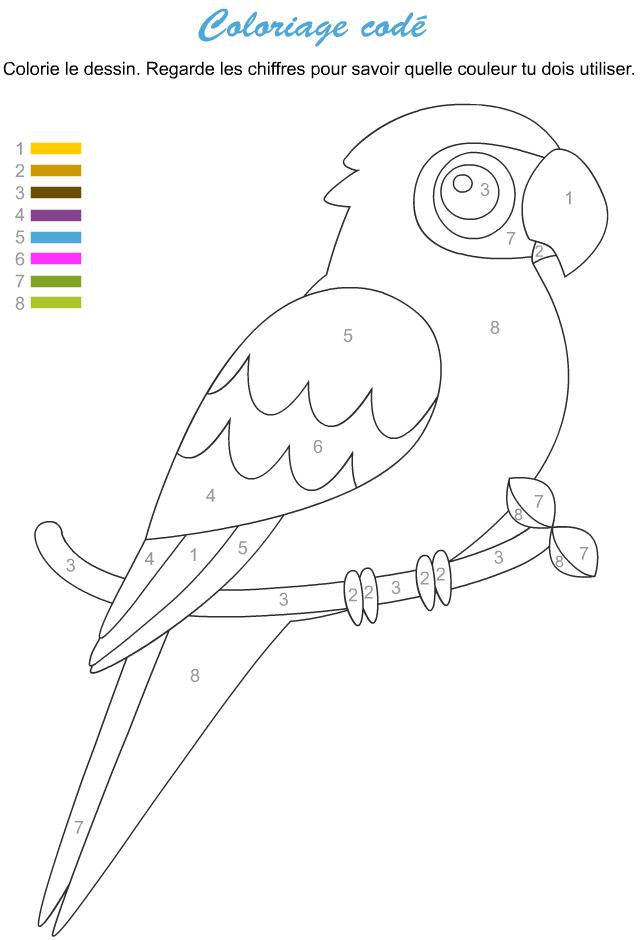 Coloriage cod un perroquet tipirate - Perroquet a imprimer ...