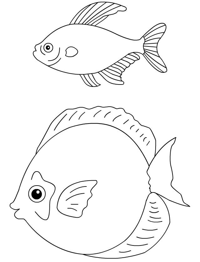 Coloriage les poissons d 39 avril tipirate - Poisson d avril a imprimer coloriage ...