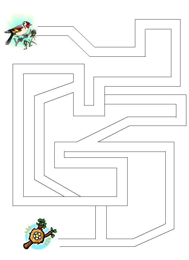 labyrinthe l 39 oiseau et le nid tipirate. Black Bedroom Furniture Sets. Home Design Ideas