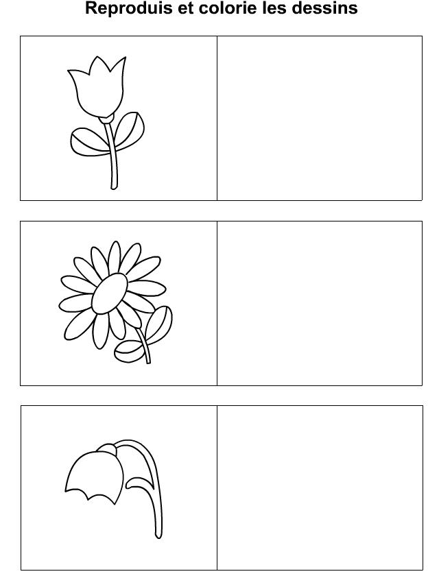 Apprendre a dessiner fleurs - Fleur a dessiner facile ...
