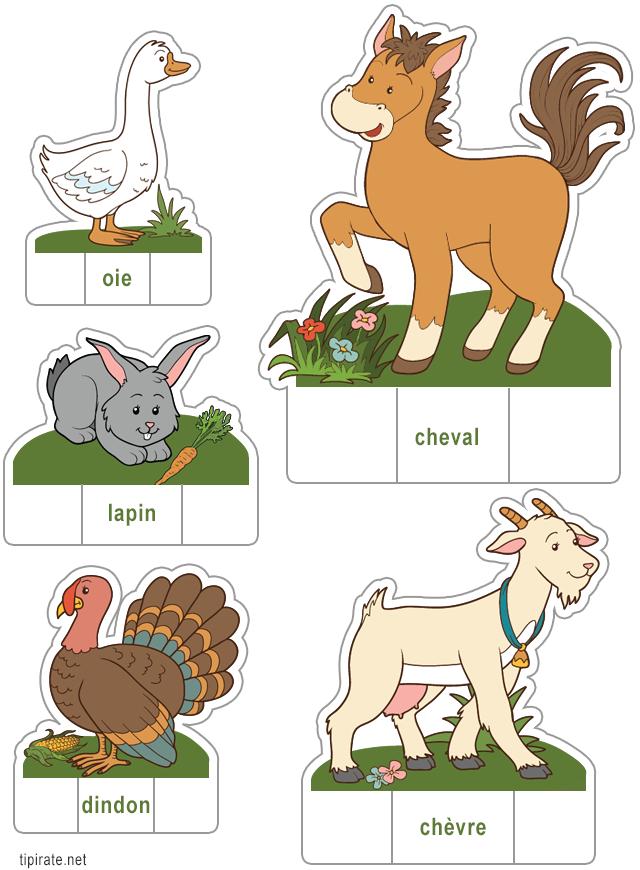 Les animaux de la ferme d couper 2 tipirate - Animaux de la jungle maternelle ...