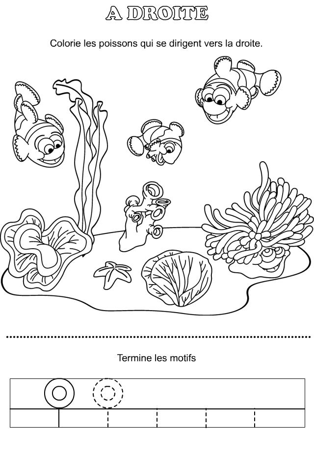 Jeux A Imprimer Pour Enfants De Maternelle Tipirate