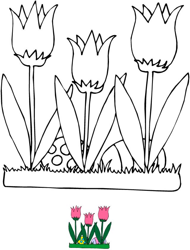 Coloriage tulipes et oeufs de p ques tipirate - Dessin de tulipe a imprimer ...