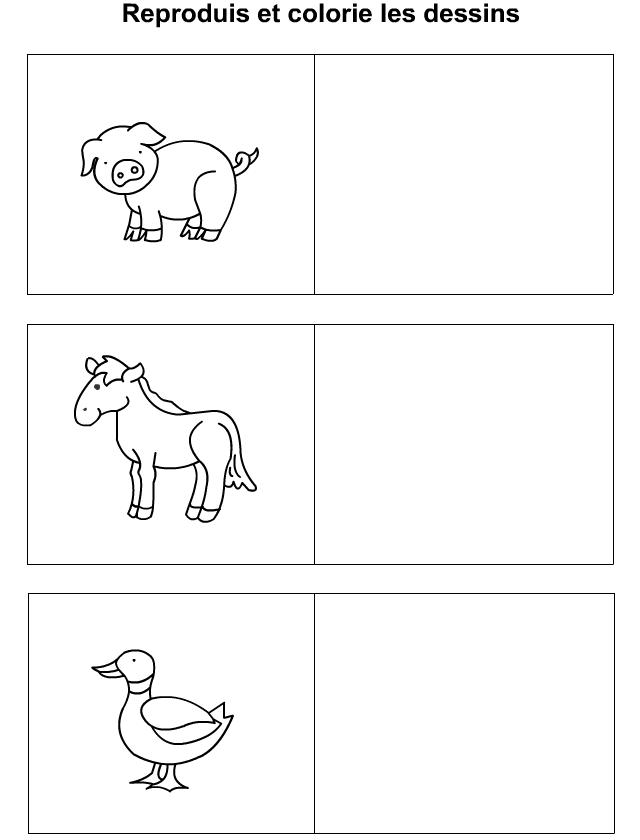 Reproduire les dessins d 39 un cochon un cheval un canard - Apprendre dessiner cheval ...